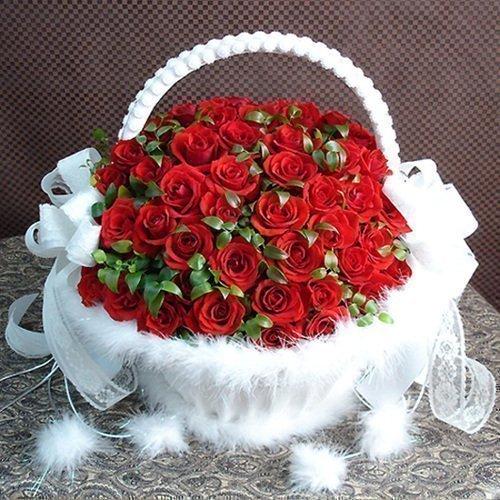 Картинки по запросу красивые фото цветов