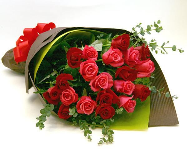 фото открытки красивые цветы